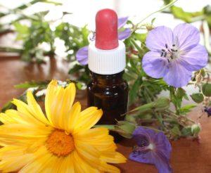 natural-medicine-1738161_1920