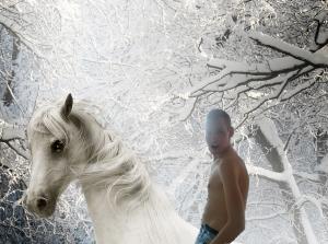 Na zimowym koniu